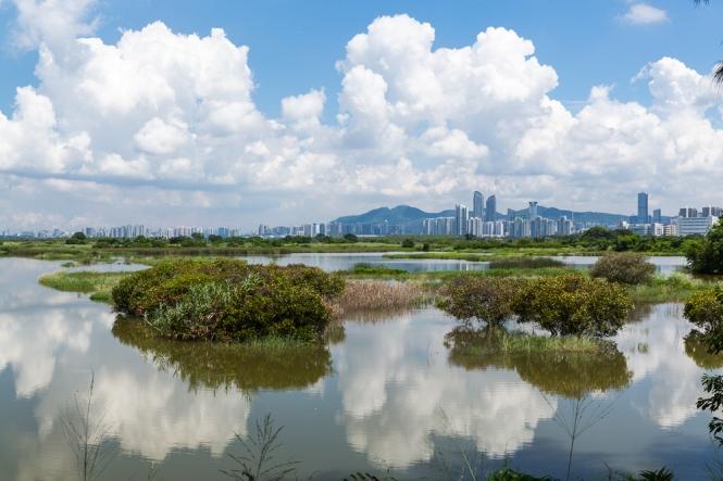 MPNR Shenzhen